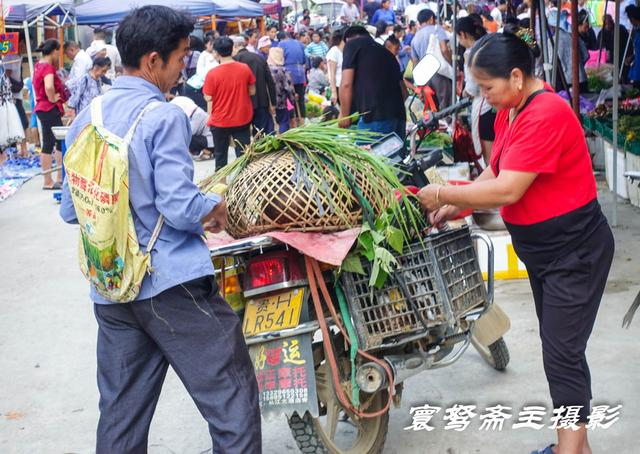 空空荡荡,赶场天来从江下江卖小猪的集市,却一只小猪崽都没看到
