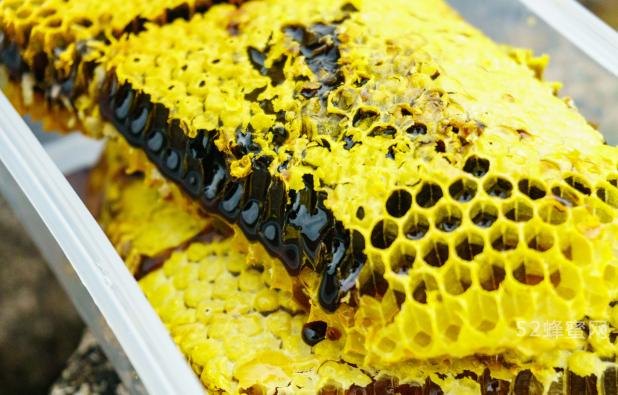 <b>云南土蜂蜜价格为什么贵?</b>