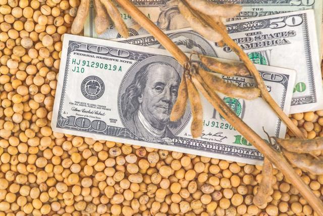 3000万吨大豆滞销,928个美国农场破产!美国农民:要怎么卖出去