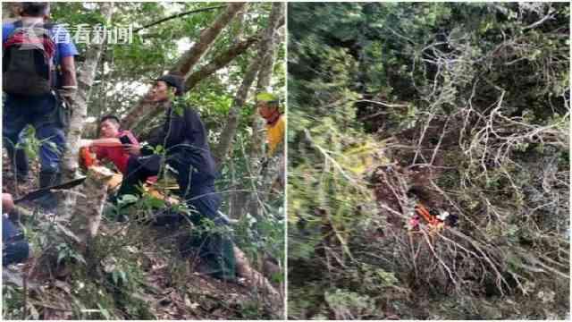 一男子遭百步蛇咬死 友睹毒发过程看尸体吊下山