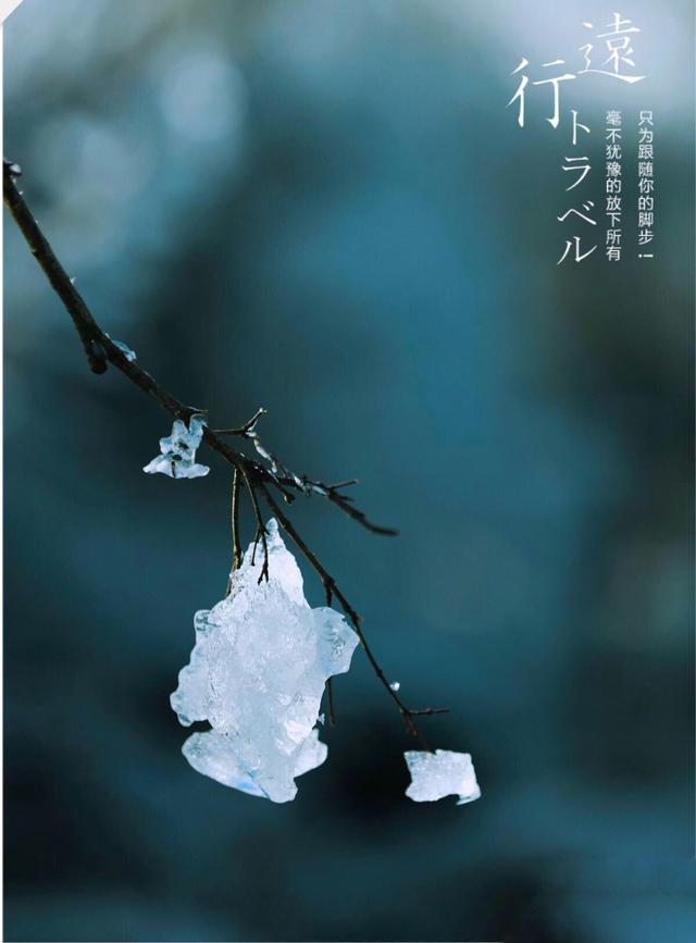 <b>瑛子_weQg-开问精选:《雪是迎接春天最美的礼赞》</b>