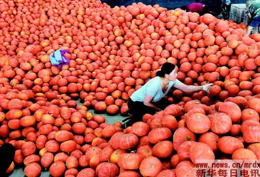 蔬菜供应平稳 价格略有上涨
