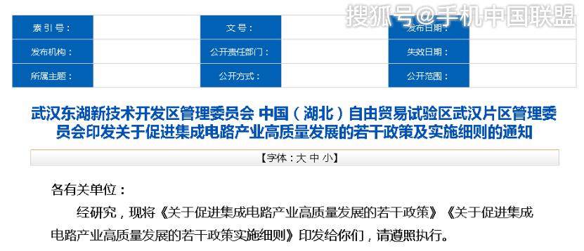 十大补贴方向,最高一亿元奖补,武汉东湖集成电路新政出炉