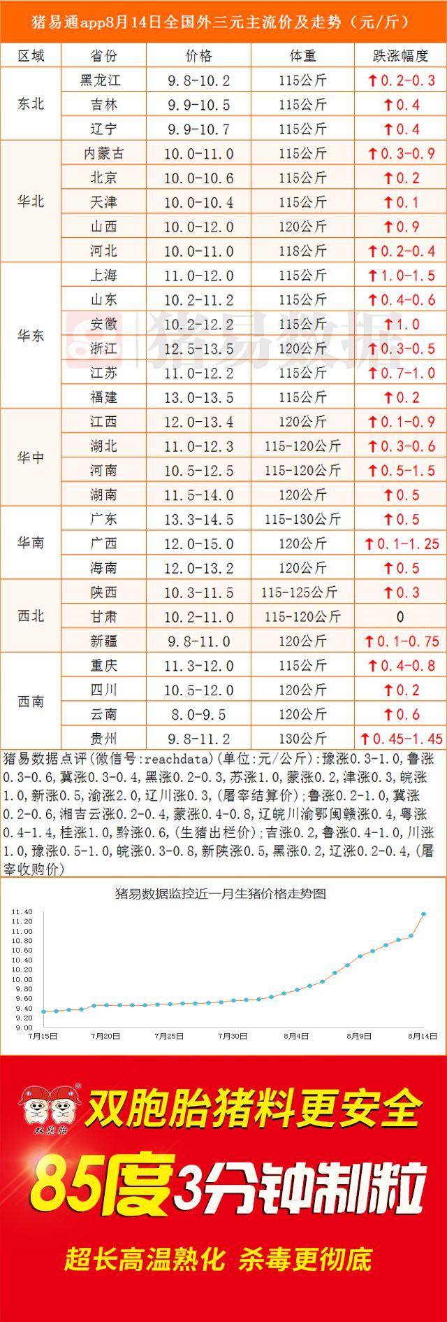 猪价继续走高  多地涨幅超1元/公斤