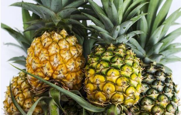 买菠萝时,大的还是小的好?水果店老板:不懂这2点,钱就白花了