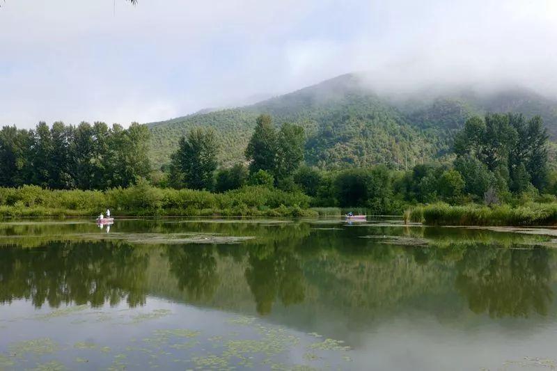 延庆四个万亩森林湿地公园将落地!分别在这些地儿