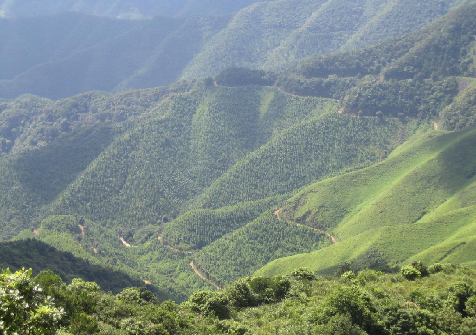"""广东被遗忘的山,被称为""""佛山第一峰"""",还是4A景区,却名气很低"""