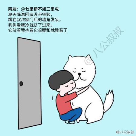 最感动的一件事_泪奔 那些与宠物之间发生的最令人感动一件事