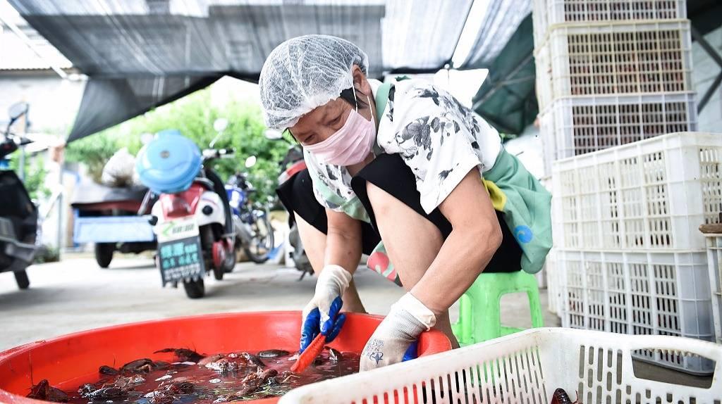 信良记李剑:爆款难长久,小龙虾为什么却是例外?