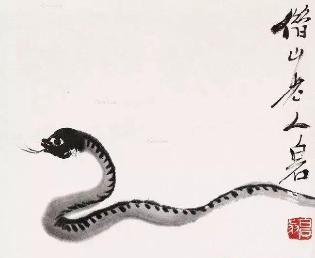 蛇不知道自己有毒,人不知道自己有错!(好露骨)