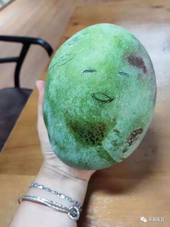 吓人!这个地方的芒果比脸还大,村民都抢着自己吃!