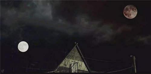 2019年恐怖片排行榜_禁书 拍成了电影,还原了恐怖大师斯蒂芬 金的噩梦