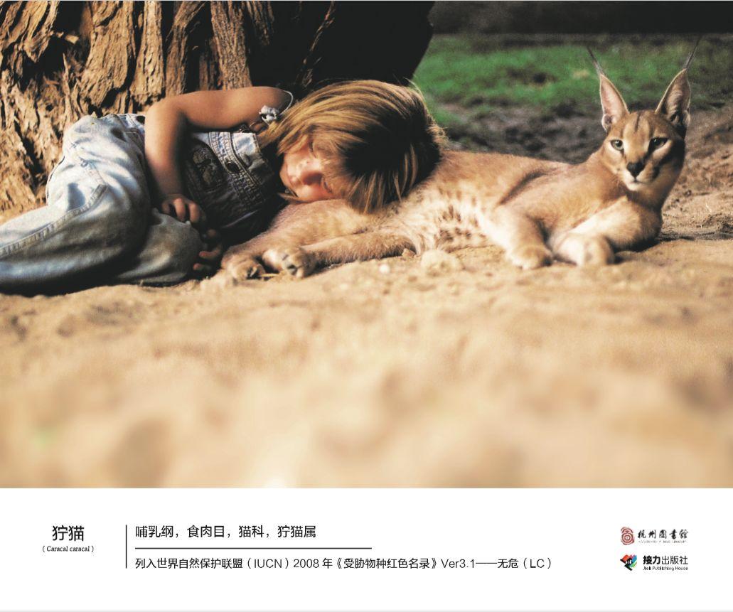 YUE杭图 阅 消失的朋友 我的野生动物朋友 主题摄影展