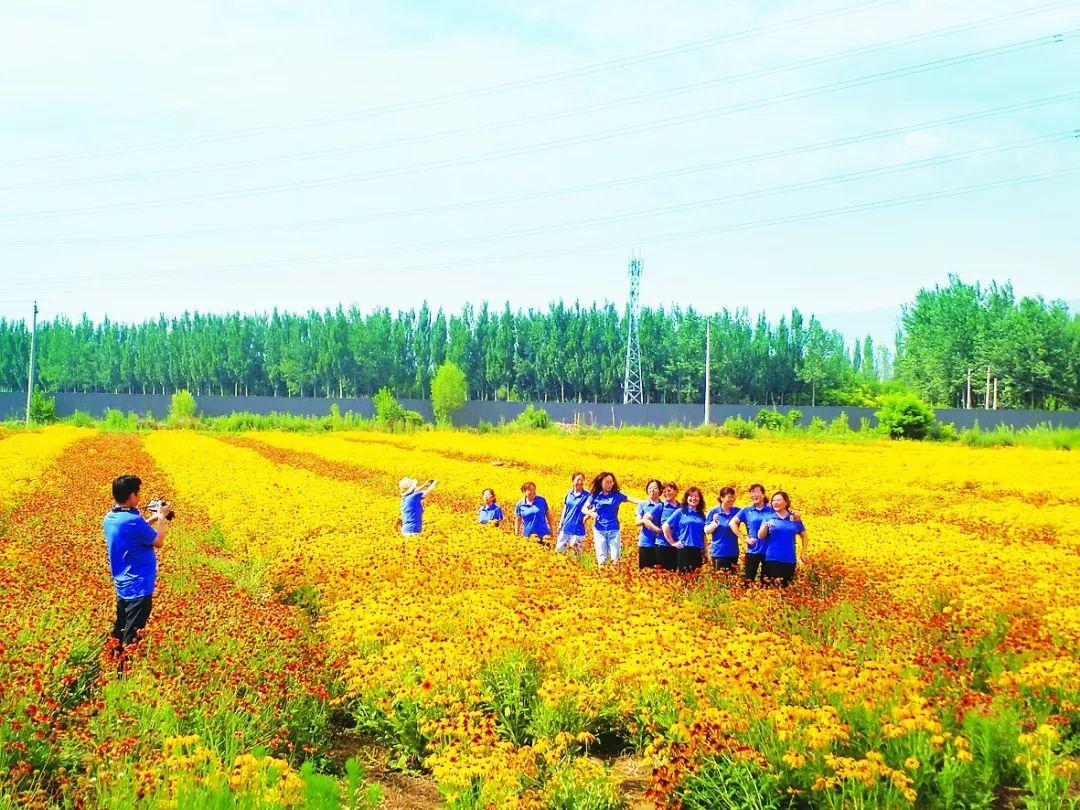 <b>饱览田园风光,感受丰收喜悦!太原北部现代农业园鲜食玉米迎来采摘季</b>