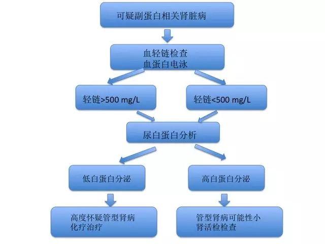 管型肾病的评估和治疗