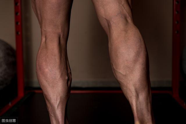 肌肉由什么组成_提踵,不可忽略的小腿训练动作,原来还有这么多讲究_肌肉