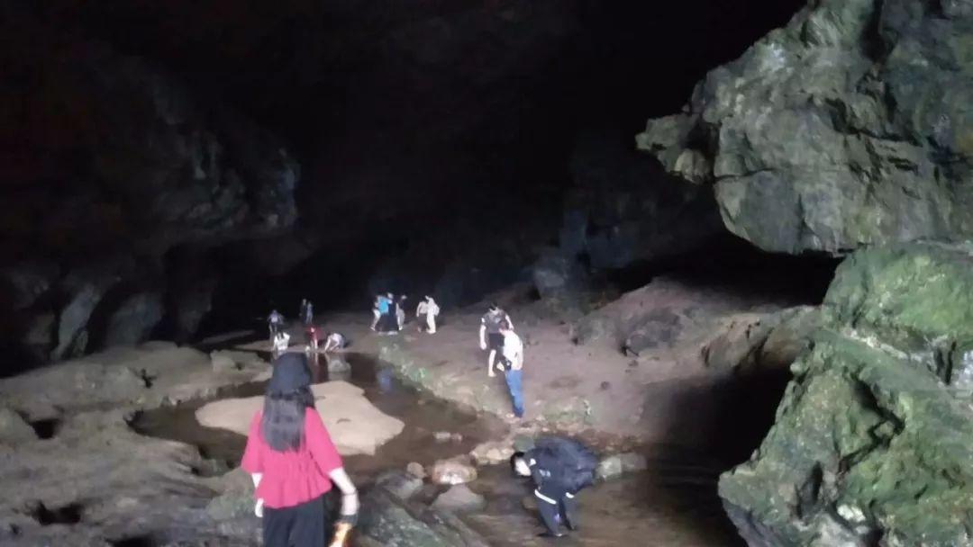 童乐趣冒险去!玩转曲江罗坑大草原溶洞探险+溯溪玩水=亲子自然探索(图4)