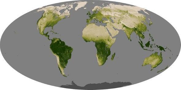 地球20年前已停止变绿 网友:蚂蚁森林的树可不是白种的!