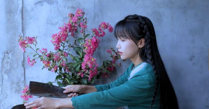 奇女子李子柒:一股清新淡雅之风打入