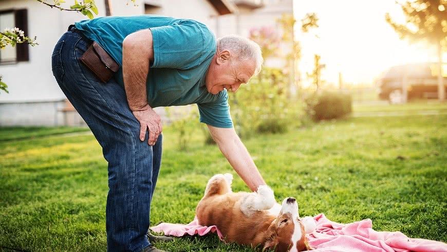 较真丨老年人弯腰低头捡东西,会造成动脉破裂吗?