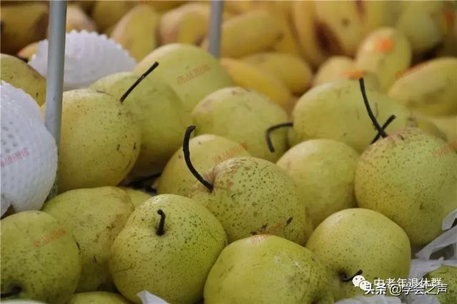 """""""忌食二瓜,多吃三宝""""是啥意思?立秋过了这些水果最养人了"""