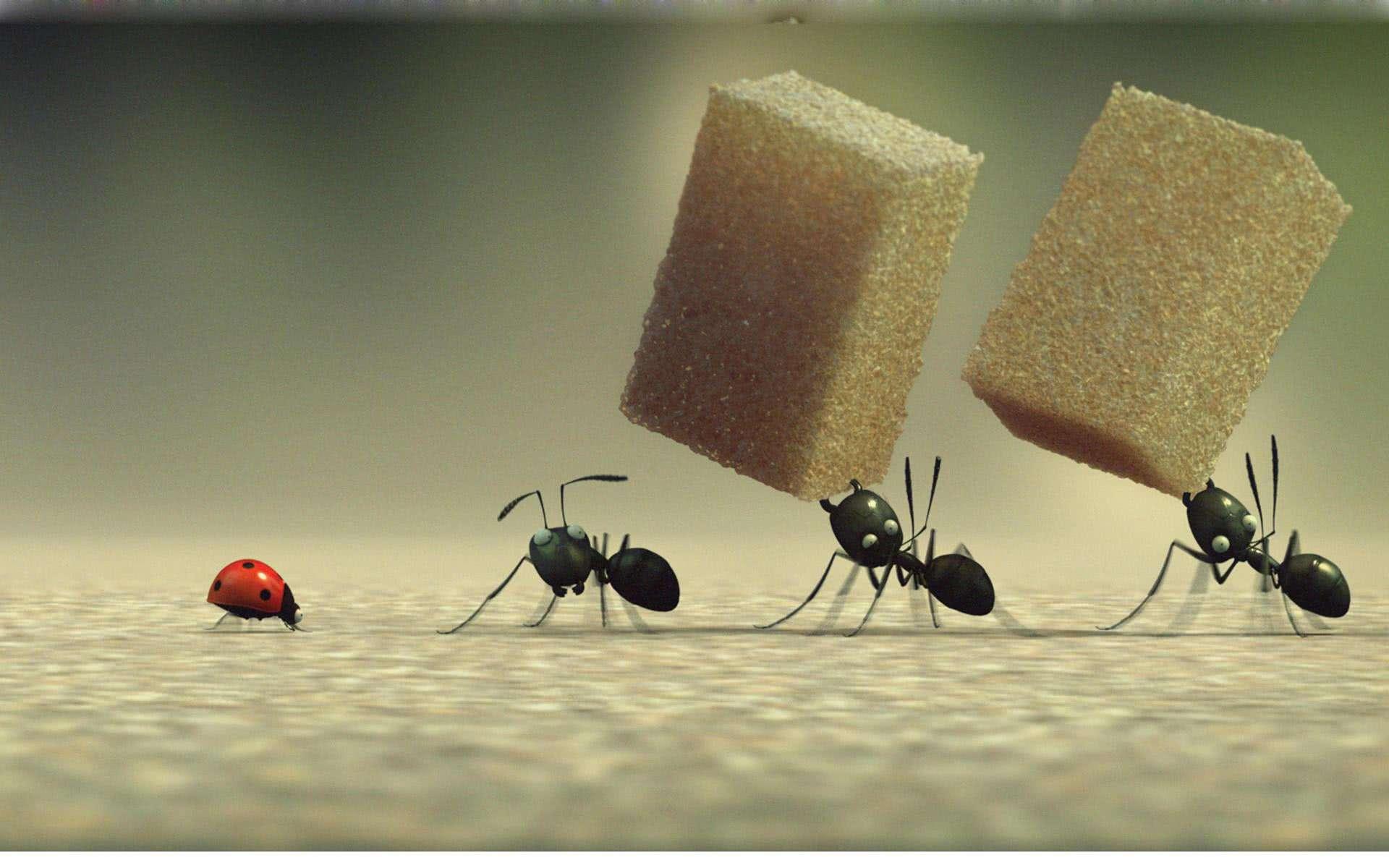 蚂蚁搬东西简笔画彩色