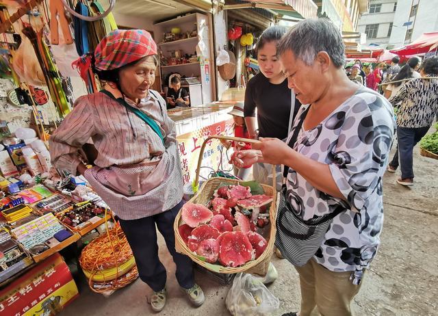 墨江食用菌按筐卖,外地人恐惧不敢品尝,本地人却说已经等了一年