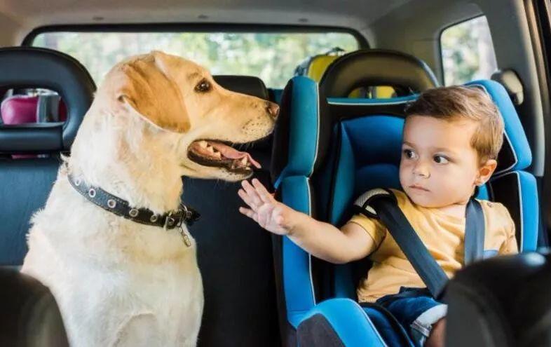 有孩子的都看看!孩子坐你的车安全吗?
