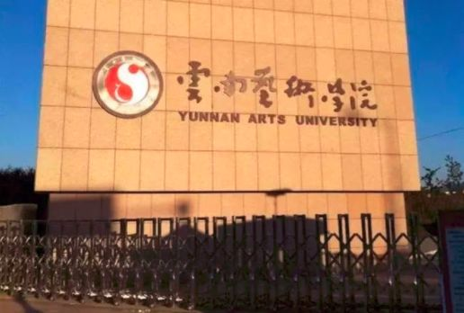 艺考 | 云南艺术学院2019录取分数线