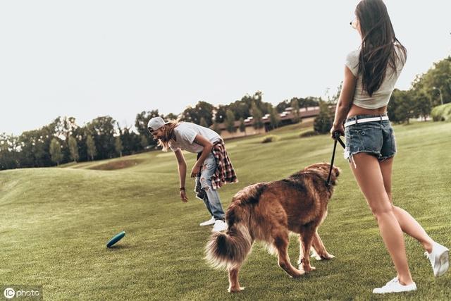 欧美美女让狗操b视频_为什么女生更喜欢养公狗呢?难道狗界也有\
