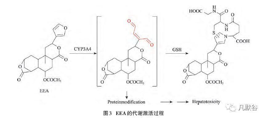 人造沸石吸附细胞色素C的原理_人造卫星简笔画