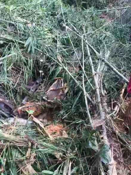 老挝车祸12名中国游客遇难!伤者在3家医院,有两个家属接待站