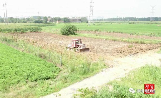 鄧州:違規占用耕地當料場,國土