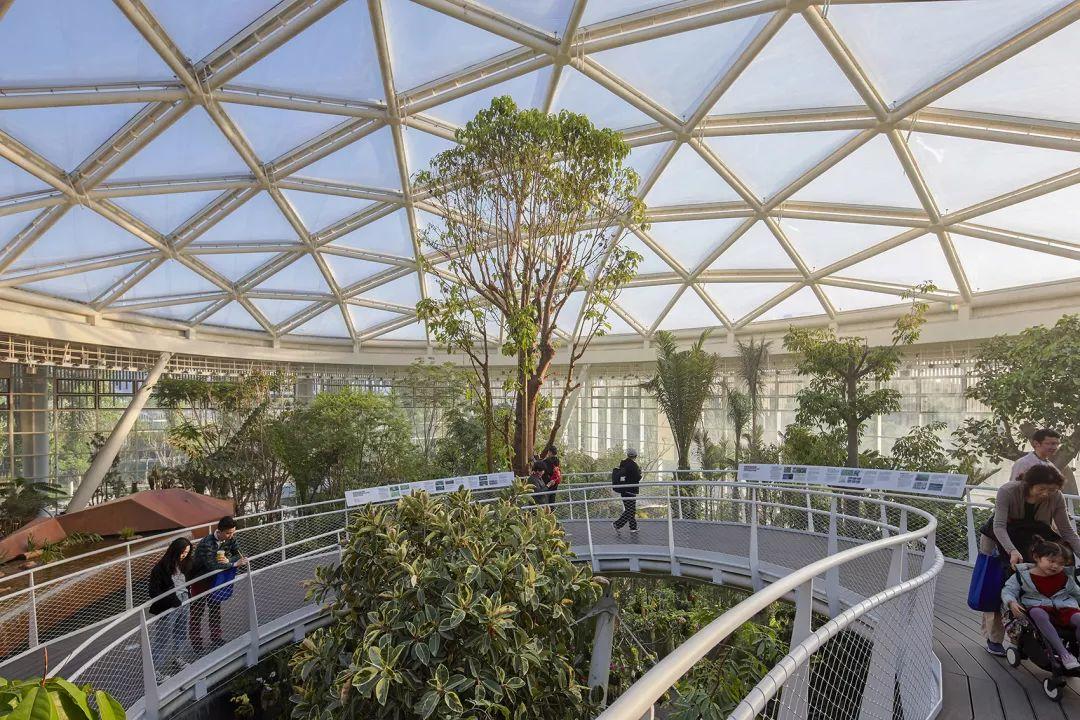 我与小岳�_2019北京世界园艺博览会植物馆 / urbanus都市实践