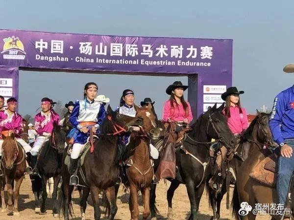 砀山县将举办2019年中国砀山国际马术耐力赛