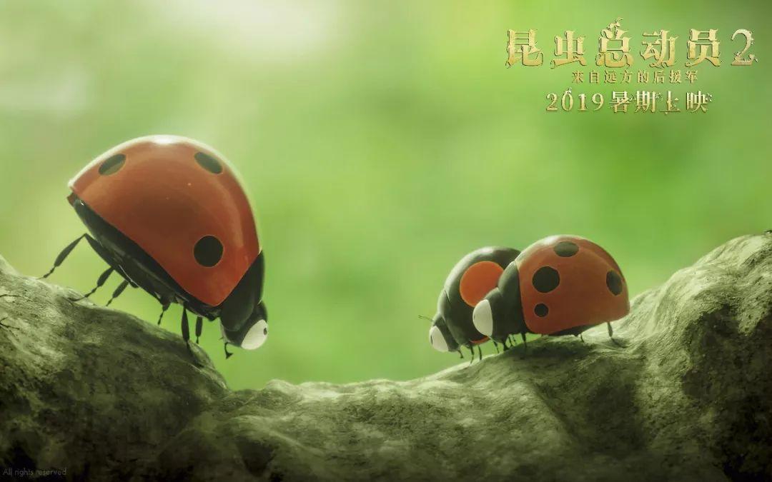 昆虫总动员大电影2在线