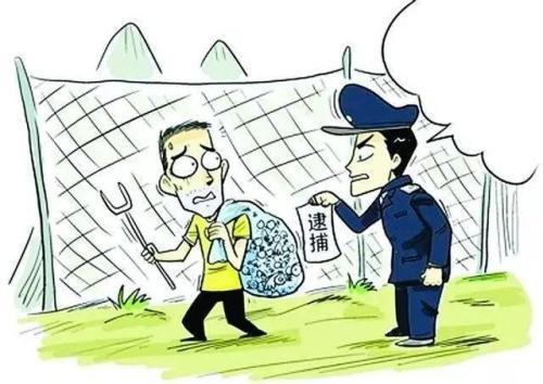 非法猎捕野生动物触犯刑法损害公益_王某
