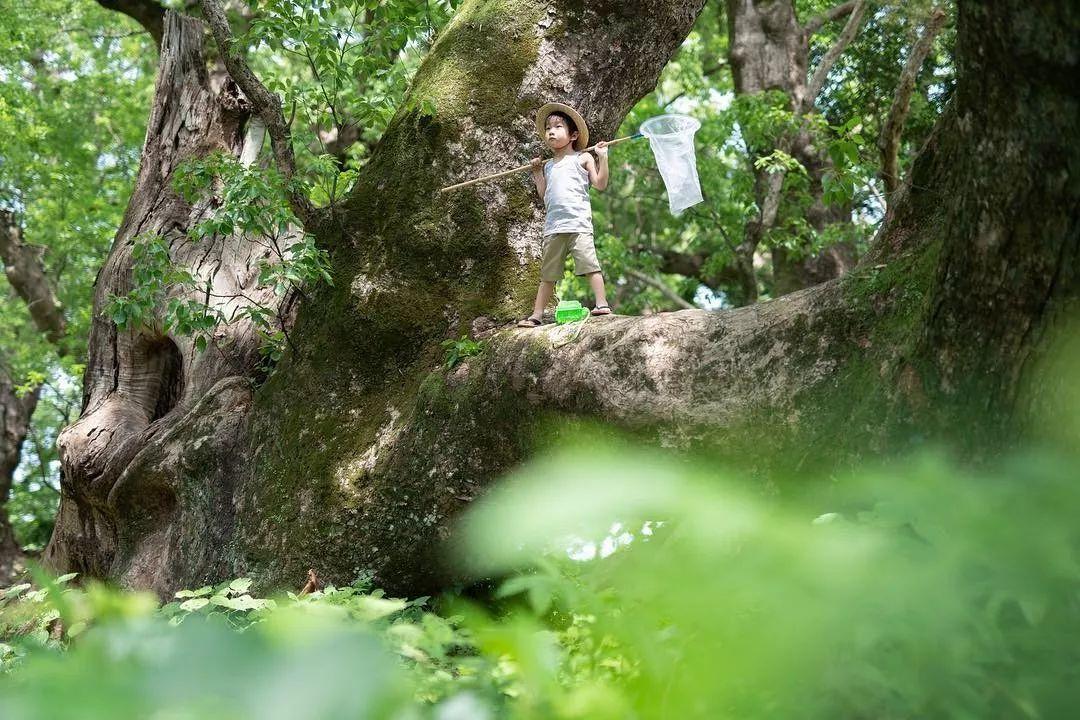 日本一乡下老爸用相机记录儿子的暑假日常,背景意外走红!网友:这才是我记忆里的夏天!