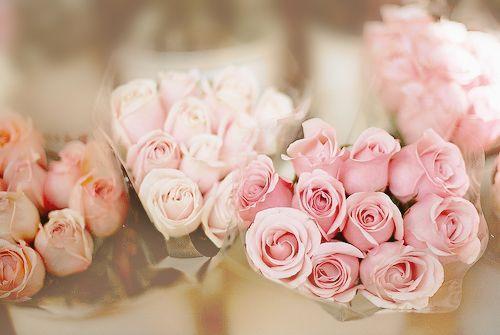 人生短暂,计较得太多会疲劳,知足者就快乐,不知足者就不快乐。