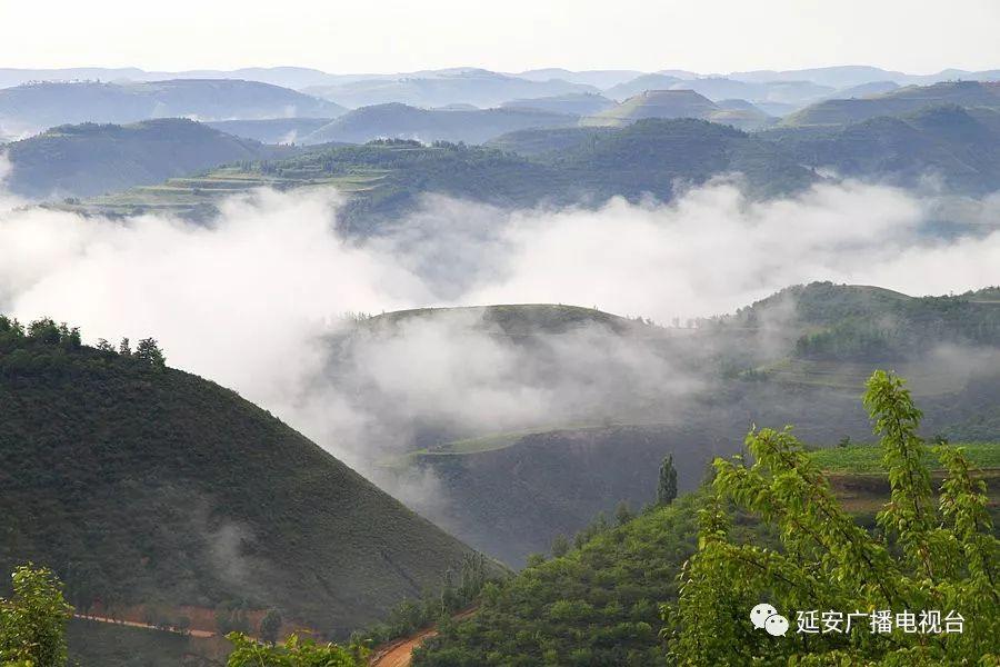 吴起:保护生态环境 共建美好家园