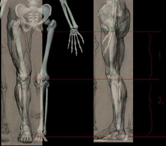 如何绘画动漫人物的腿部