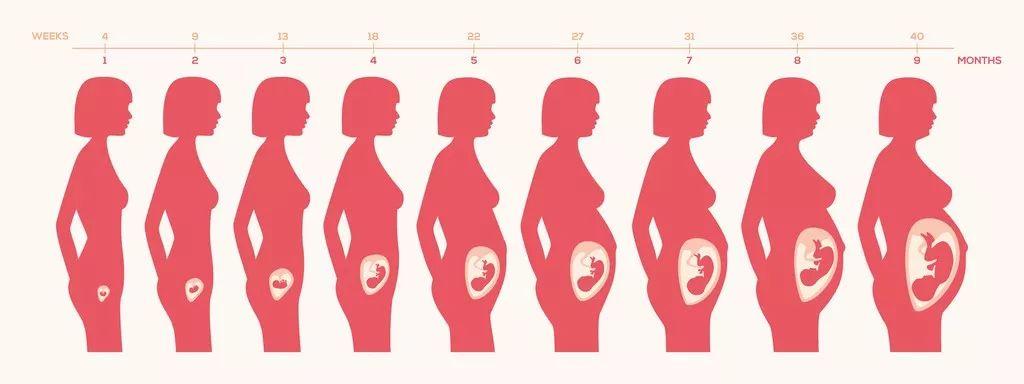 """准妈妈的福利!!一份产科专家推荐的""""孕期备忘录""""!"""
