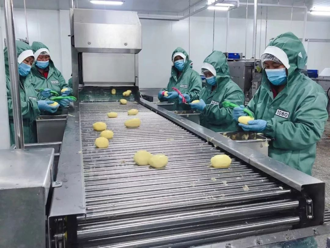 目前,基地已建成4080平方米的净菜及马铃薯深加工车间,年加工马铃薯2图片