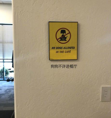 餐厅不允许狗狗进入,小家伙只好在门口等主人,这姿势没谁了