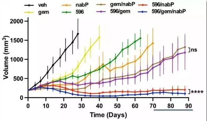 新研究揭示胰腺癌的源起、转移以及如何提高疗效
