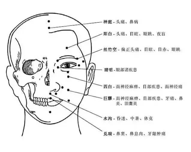 最全人体穴位与功效图谱