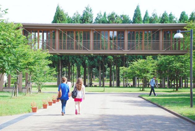 日本政府留学生奖学金怎么申请?