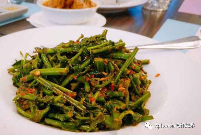 马拉盏芭苦菜 味道很奇特,涩涩的,但后续有回甘,可还有很多人迷上了