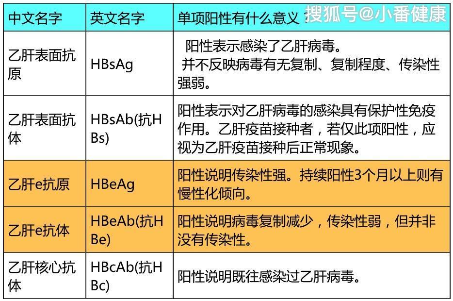 怎样判断乙肝,通过转氨酶是否异常,直观区分携带者与慢乙肝
