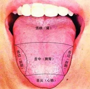 舌头是疾病的 照妖镜 ,中医教你5招,通过舌诊看出疾病图片